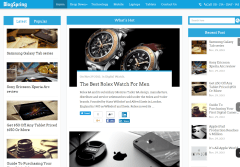 Homepage of BlogSpring theme