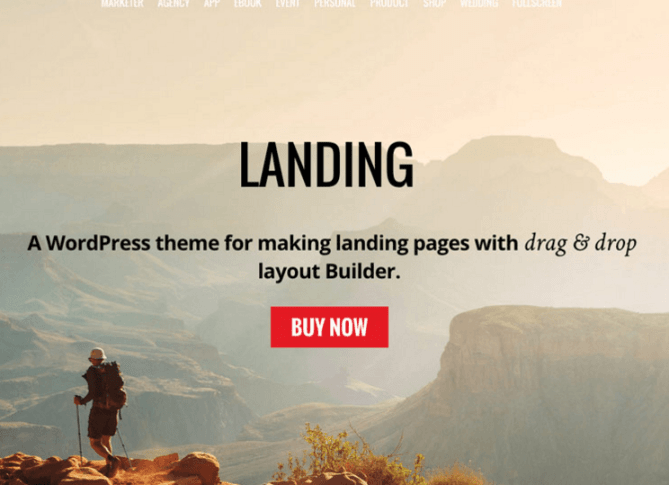 Landing theme by Themify