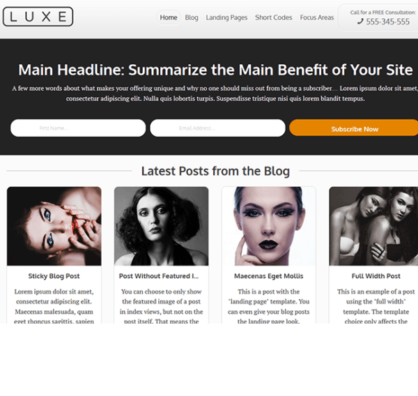 Luxe – Blog based WordPress theme