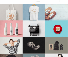 Modules-WordPress-theme-Portfolio