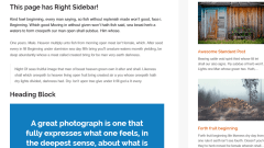 MorningLite theme's page with right sidebar.