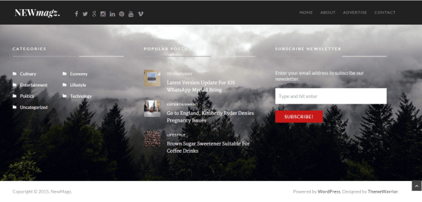 NewMagz- Footer of this theme