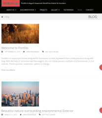 Portfolio-WordPress-theme-blogs