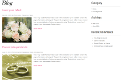 SKT Wedding Lite Blog Page