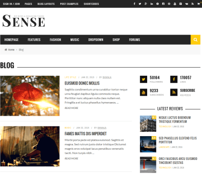 Sense- Blog page layout. Several blog page layouts are supported by this theme