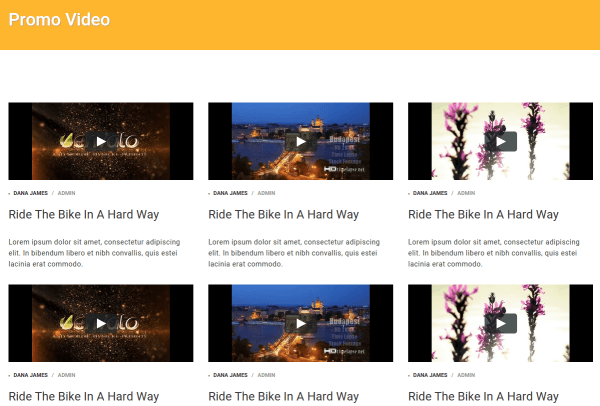 Triathlon Video Page