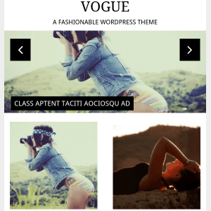 Vogue Fashionable & Elegant WordPress Theme