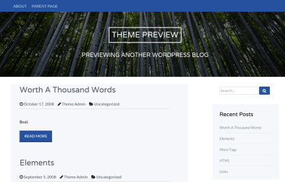 Wise Theme Preview Page