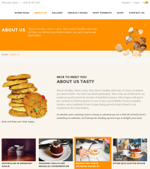About Us page of tasty