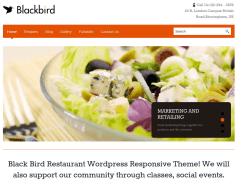 Blackbird Home Page
