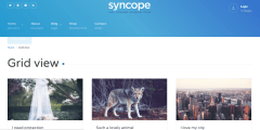 Blog grid page of syncope