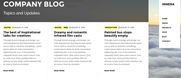 Blog page of Ineera