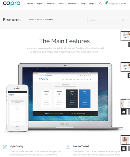 Features of CoPro theme