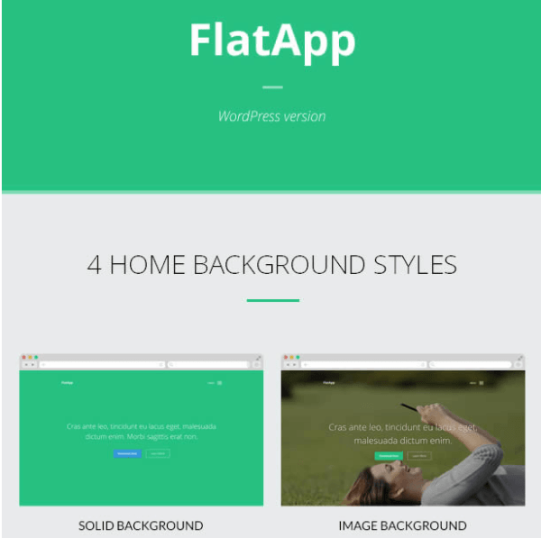 FlatApp –  App landing page for Responsive WordPress theme