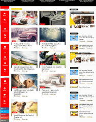Gallery of Videonews theme