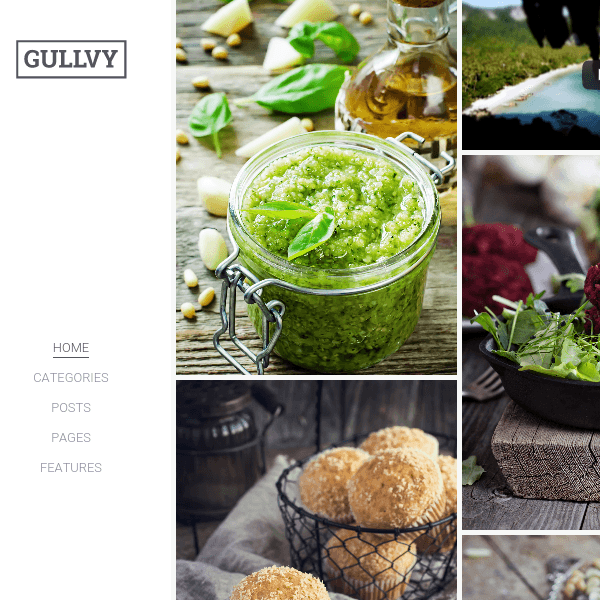 Gullvy – A stylish & flexible WordPress Blog Theme