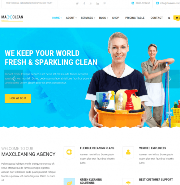 Homepage of Max Cleaners and Movers