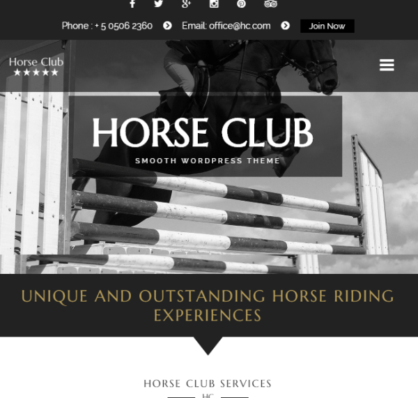 Horse Club – Equestrian Business WordPress  theme