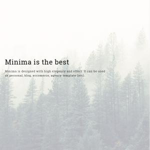 Minima - Creative & Professional WP Theme