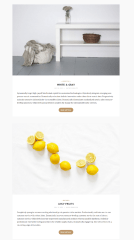 No Sidebar Page Layout  – Canary