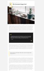 Post format of Wellow theme