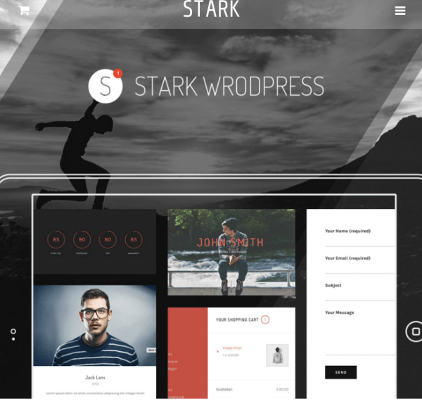 STARK – Multipurpose theme to start with WordPress.