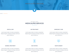 Services Page – MedicalPro
