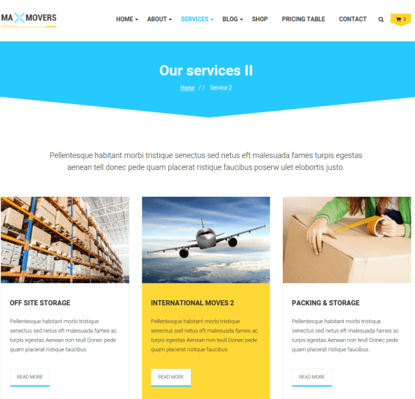 Services page of Max Cleaners and Movers