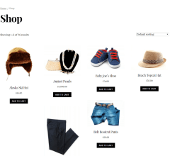 Shop page of Infinite theme