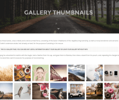 Thumbnail Gallery – TopPic