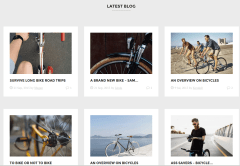 Velo Latest Blog Section