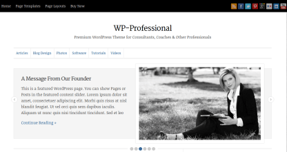 WP-Professional Home Page
