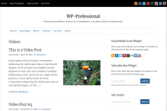 WP-Professional Video Page