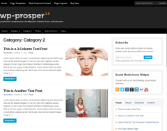 WP-Prosper Category 2 Page