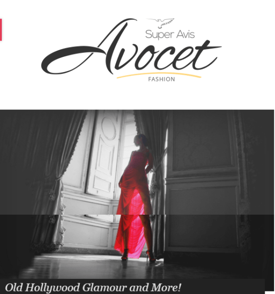 Avocet – WordPress Blog Theme