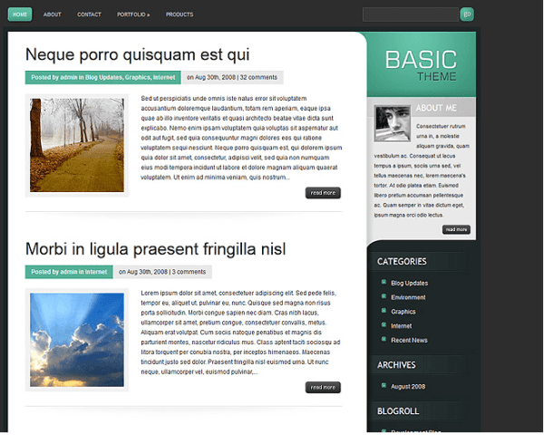 Basic – Blog based WordPress theme