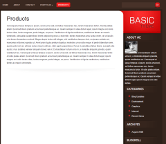 Basic – sample product page