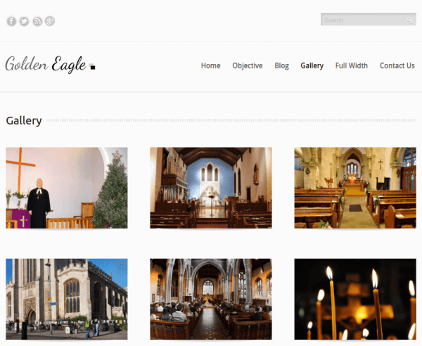 Gallery Page of Golden Eagle