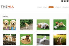Gallery Page of Themia
