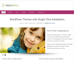 Home Page of Squirrel