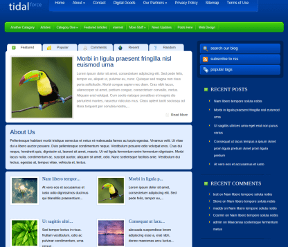 Home Page of TidalForce