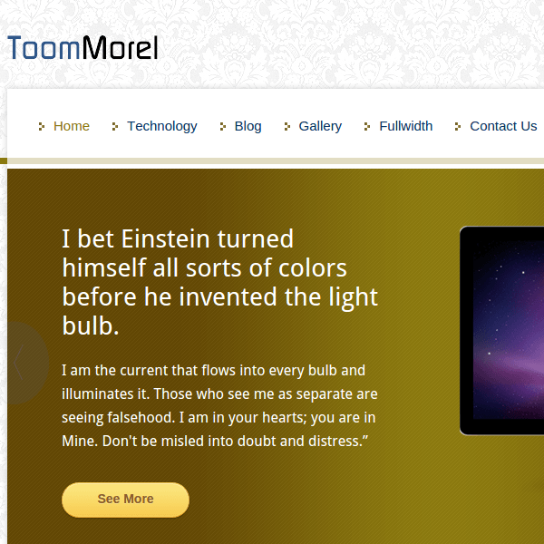 TOOMMOREL - A MULTIPURPOSE WORDPRESS THEME
