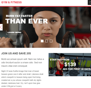 Gym & Fitness - WP Theme for Gym and Health related sites.
