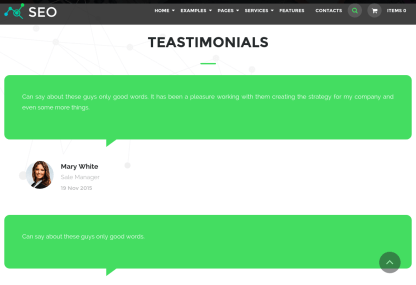 Testimonial Page of The SEO