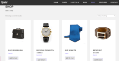 shop-page-of-leader