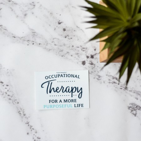 Purpose Therapy Box Purposeful Life Occupational Therapy
