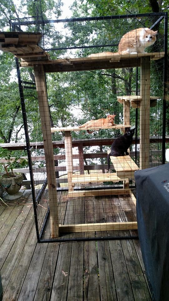 Catio on Deck