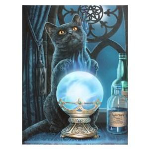 19x25cm The Witches Apprentice Canvas Plaque by Lisa Parker