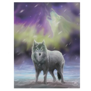 19x25cm Aurora Canvas Plaque by Anne Stokes