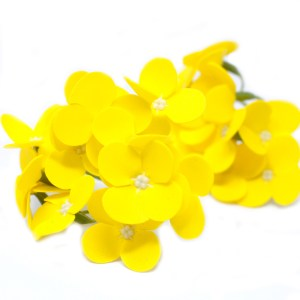 Craft Soap Flowers - Hyacinth Bean - Yellow